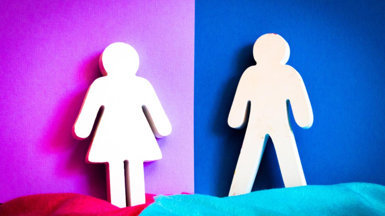 En búsqueda de la congruencia de género: ¿purplewashing o compromiso real?